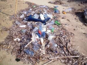 spiaggiati plastica